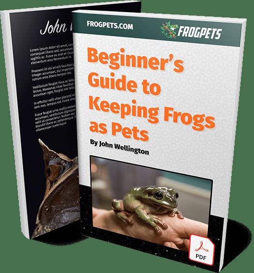 Beginner's Guide PDF Ebook